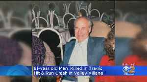 Grandfather, 91, Killed In Hit-And-Run While Walking Dog In Valley Village [Video]