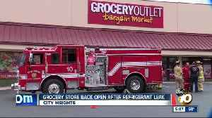 Grocery store back open after refrigerant leak [Video]