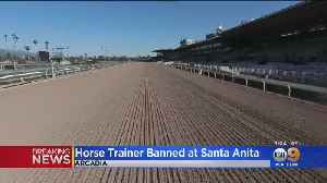 Another Horse Has To Be Euthanized At Santa Anita [Video]