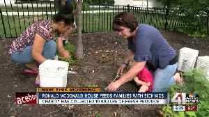 Milestone moment: Garden at Ronald McDonald House Charities of KC collects 10,000 pounds of food [Video]