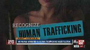 Hillsborough Co. human trafficking sting leads to 85 arrests [Video]