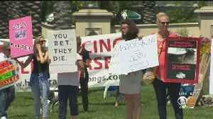 Protesters Demonstrate Outside Santa Anita Park Following 30th Horse Death [Video]