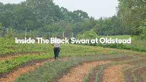 Inside the Black Swan at Oldstead with Tommy Banks [Video]