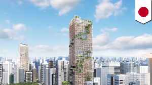 Tokyos' wooden skyscraper plans explained [Video]