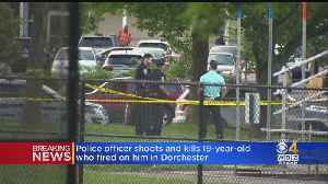 Police Officer Shoots, Kills 19-Year-Old Who Opened Fire [Video]