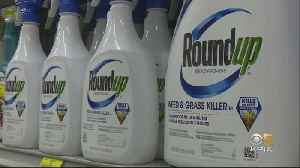 East Bay School District Bans Chemical Found In Roundup Weed Killer [Video]