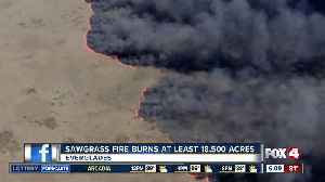 Sawgrass Fire in Everglades burns 18,000 acres [Video]