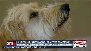 Funeral home offers therapy dog at services [Video]