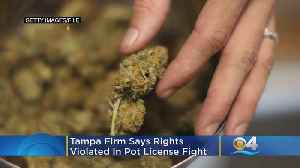 Tampa Firm Says Rights Violated In Pot License Fight [Video]