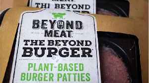 Beyond Meat Is Up More Than 500% Since IPO [Video]
