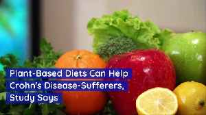 Plant-Based Diets Can Help Crohn's Disease-Sufferers, Study Says [Video]