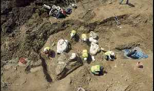 Paleontologists Unearth Dinosaur Fossils at Colorado Construction Site [Video]