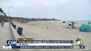 Heal the Bay report card: Some of the cleanest beaches in California are in San Diego County [Video]