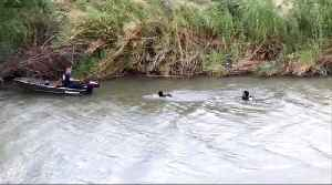 Photo of drowned father and daughter on US-Mexico border highlights migrants' perils [Video]