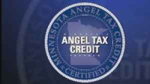 What Is An 'Angel Tax Credit'? [Video]