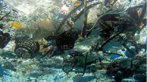 Environmental Group Hauls Out 40 Tons Of Trash From Great Pacific Garbage Patch [Video]