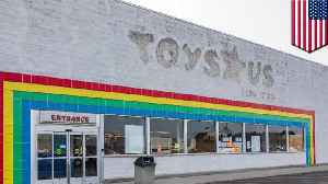 Toys R Us bankruptcy lawyers get $56M while laid-off workers $2M [Video]