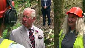 Prince Charles oversees horse logging in Wales [Video]