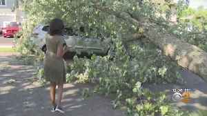 Deadly Fast-Moving Storm Leaves Wreckage, Power Outages In Its Wake [Video]
