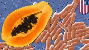 62 infected in U.S. salmonella outbreak linked to papayas [Video]