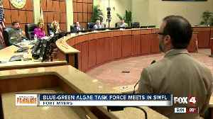 Governor's blue-green algae task force meets in Fort Myers [Video]