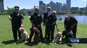 3 new Pittsburgh K9 officers sworn in [Video]
