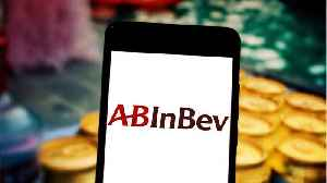 AB InBev Seeks $9.8 Bln For Asian Stake In IPO [Video]