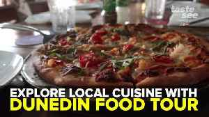 Taste local cuisine with Dunedin Food Tour | Taste and See Tampa Bay [Video]