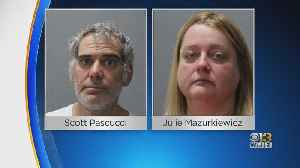 2 Board Members Of Animal Welfare Society In Columbia Charged With 50 Counts Of Animal Cruelty [Video]