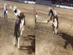 WILD RIDE! World's Oldest Rodeo in Prescott for Fourth of July - ABC15 Digital [Video]