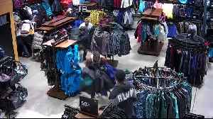 News video: 'Flash mob' shoplifters descend on Pleasant Prairie North Face store [VIDEO]