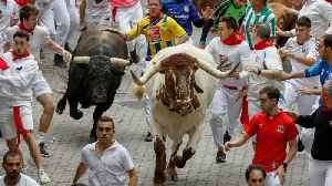 One Spaniard, Two Americans Gored By Running Bulls Of Pamplona [Video]