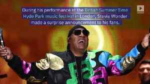 Stevie Wonder Is Taking a Break From Performing to Undergo Kidney Surgery [Video]