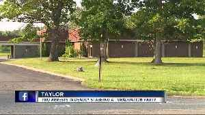 Two arrests made after deadly stabbing in Taylor [Video]