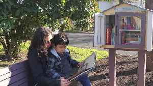 Sharing Books and Building Communities Through Little Free Libraries [Video]