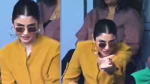 Anushka Sharma trolled for asking what's the signal for a 'four' [Video]
