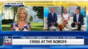 Kellyanne Conway Calls Pelosi, Ocasio-Cortez Feud A 'Major Meow Moment' [Video]