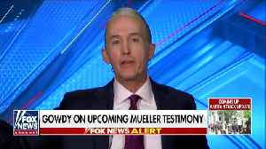 Trey Gowdy doesn't expect anything new from Mueller testimony [Video]