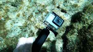 Scuba diver finds someone's functioning GoPro in Mexico [Video]