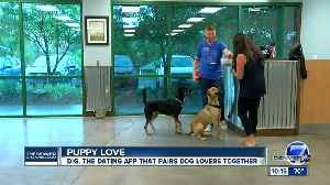Newly-launched app helps Denver dog-lovers find human love [Video]