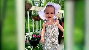 Family Of Chloe Wiegand, Toddler Who Suffered Fatal Fall From Cruise Ship, Puts Blame on Royal Caribbean [Video]