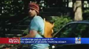 Cambridge Police Search For Suspect in Early-Morning Assault [Video]