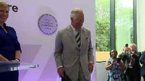 Prince Charles tests a flight simulator [Video]
