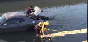 Firefighters Rescue Man Who Drove Car Into Kern County Canal [Video]