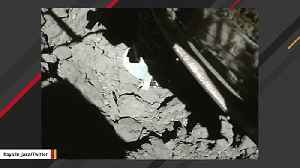 Hayabusa 2 Lands On Asteroid To Collect Samples [Video]
