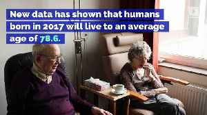 Life Expectancy in the US Falls for a Third Straight Year [Video]