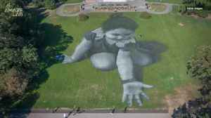 French Artist's Massive Grass Graffiti Portraits are Beyond Incredible [Video]