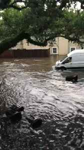 News video: New Orleans Flooding