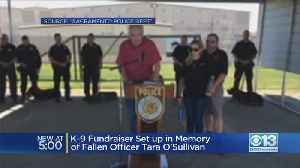 K9 Fundraiser Set Up In Memory Of Fallen Officer Tara O'Sullivan [Video]