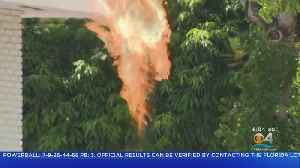 Coconut Grove Residents Back Home After Propane Gas Leak Burn-Off [Video]